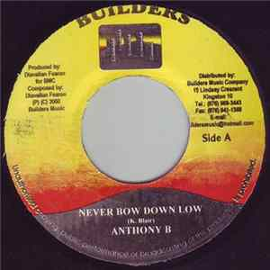 Anthony B, Yaba Conscious - Never Bow Down Low / Reggae Music Album